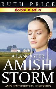 A Lancaster Amish Storm - Book 2