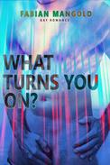 What turns you on? - Gay Romance