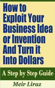 How to Exploit Your Business Idea or Invention and Turn it Into Dollars: A Step by Step Guide