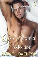 Gay Erotica Collection Volume 1