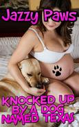 Knocked Up By A Dog Named Texas KNOTTING ZOOPHILIA BESTIALITY TABOO BESTIALITY DOG XXX DOG SEX IMPREGNATION BREEDING