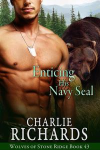 Enticing his Navy Seal