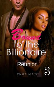 Bound to the Billionaire 3: Reunion