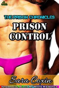 Prison Control