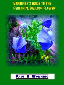 Gardener's Guide to the Perennial Balloon Flower