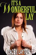 It's a Wonderful Lay