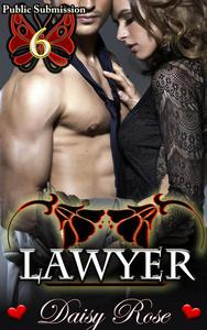 Public Submission 6: Lawyer