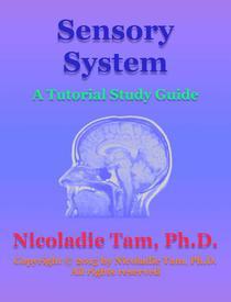 Sensory System: A Tutorial Study Guide