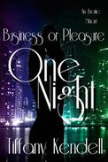One Night - Business or Pleasure