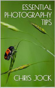 Essential Photography Tips: Get the Most out of Your DSLR
