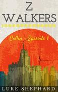 Z Walkers: Collin - Episode 1