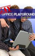 Gay Office Playground
