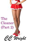 The Cleaner Part Two