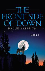 The Front Side of Down: Book 1