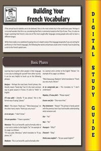 French Vocabulary (Blokehead Easy Study Guide)