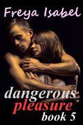 Dangerous Pleasure Book 5