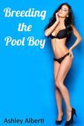Breeding the Pool Boy (Breeding Erotica)