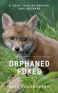 Orphaned Foxes: A true tale of rescue and release