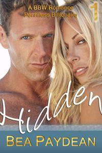Hidden (A BBW Romance)