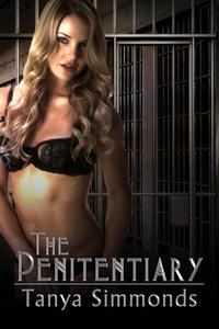 The Penitentiary: A Femdom Thriller