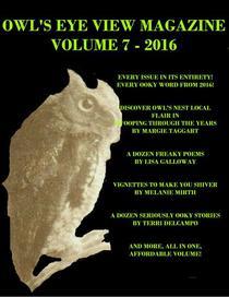 Owl's Eye View Magazine - Volume 7 - 2016 - Year End Bundle