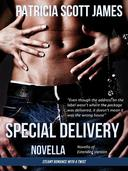 Special Delivery (novella version)