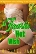 A Faerie Hot Wish
