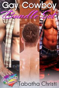 Gay Cowboy Bundle Set