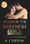 Stolen by the Werewolf: A M-M Paranormal Romance