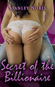 Secret of the billionaire book 2
