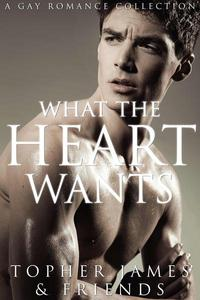 What The Heart Wants: A Gay Romance Collection