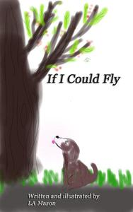 If I CouldFly