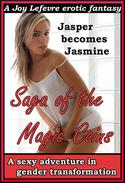 Saga of the Magic Coins: A sexy adventure in gender transformation
