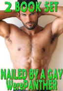 Nailed By A Gay WerePanther - Box Set (Fucked Hard, Erotic Romance, Spread Wide, Paranormal, Rough Hardcore Explicit)
