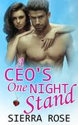 A CEO's One Night Stand