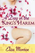 A Day in the King's Harem
