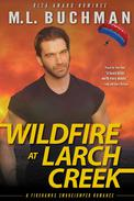 Wildfire at Larch Creek