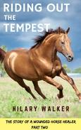 Riding Out the Tempest