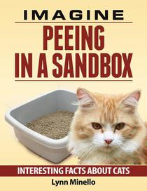 Imagine Peeing in a Sandbox - Interesting Facts about Cats