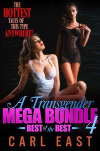 A Transgender Mega Bundle 4