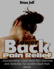 Lower Back Pain Relief: Incorporating Lower Back Pain Exercises and Stretches for Back Pain Relief!