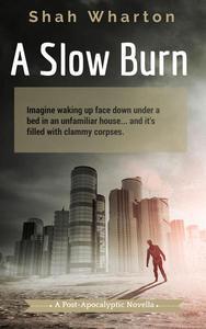 A Slow Burn: A Post-Apocalyptic Horror
