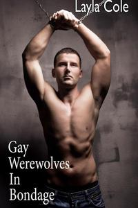 Gay Werewolves in Bondage (Gay Werewolf BDSM)