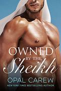 Owned by the Sheikh: An Erotic Romance Collection