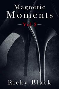 Magnetic Moments Volume 2: An Erotic Short Story Collection