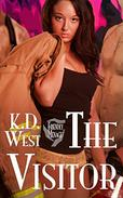 The Visitor: A Friendly Menage Tale (Bisexual FMM Threesome Erotic Romance Short Story)