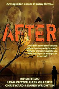 AFTER: A five book post-apocalyptic boxed set