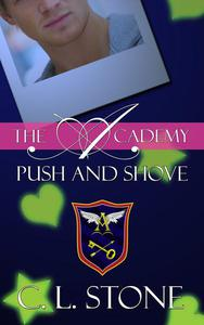 The Academy - Push and Shove