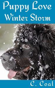 Puppy Love Winter Storm
