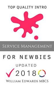 IT Service Management for Newbies: Expert Guidance for Beginners